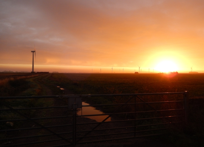 Sunrise in the fens with windturbines